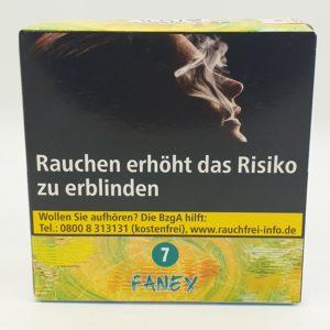 FANEX (7)